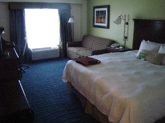 Hampton Inn Atlanta-Perimeter Center: King Room