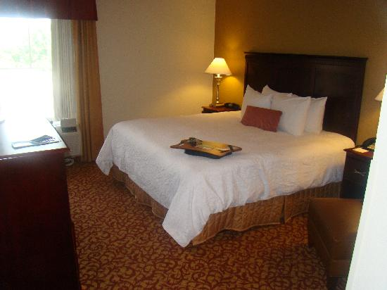 Hampton Inn and Suites Charlottesville - At The University: King  Room