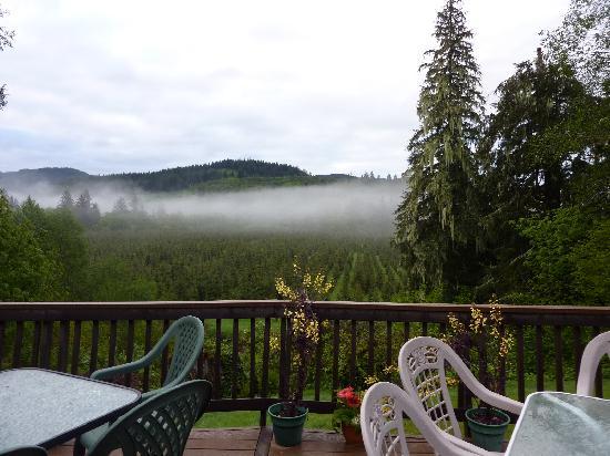 Misty Valley Inn B&B : View from Deck