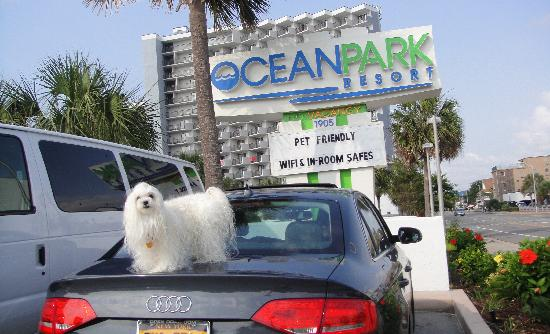 Ocean Park Resort, Oceana Resorts: Free Parking