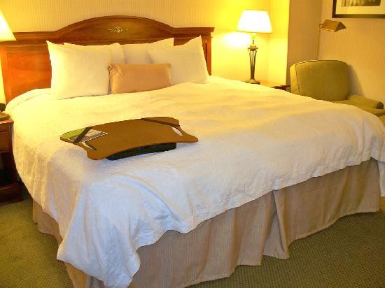 Hampton Inn & Suites Reagan National Airport: Great bed