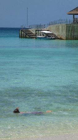 Shangri-La's Boracay Resort & Spa: snorkeling