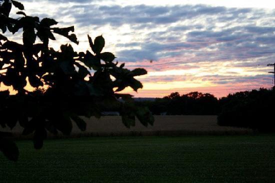 Yale Manor Bed & Breakfast: Backyard Sunset