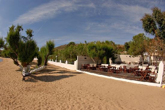 Livadi, Grecia: beach and lounge bar