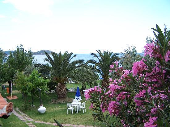Angeliki Beach Hotel: The garden