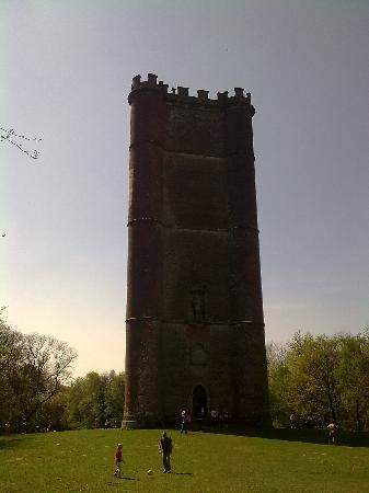 Stourhead House and Garden: King Alfred's Tower