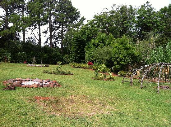 Hale Ho'omana: pic of the backyard- well maintained