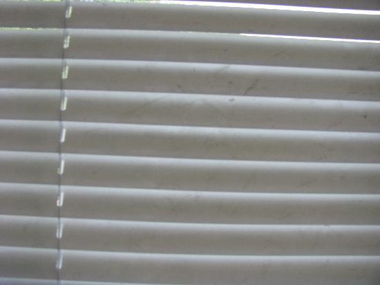 MacArthur Inn: Dirty blinds