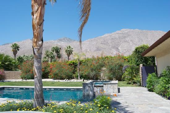 Triangle Inn Palm Springs: The house at Triangle Inn's pool and view of the mountains