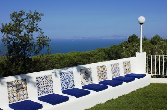Villa Le Tore: Giardino
