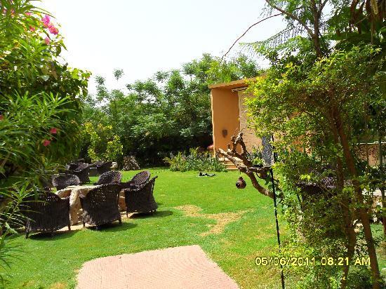 The Tree House Resort: greenery