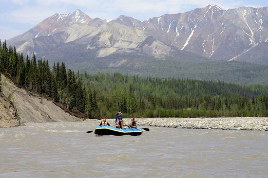 โรงแรม Wrangell-St Elias National Park and Preserve