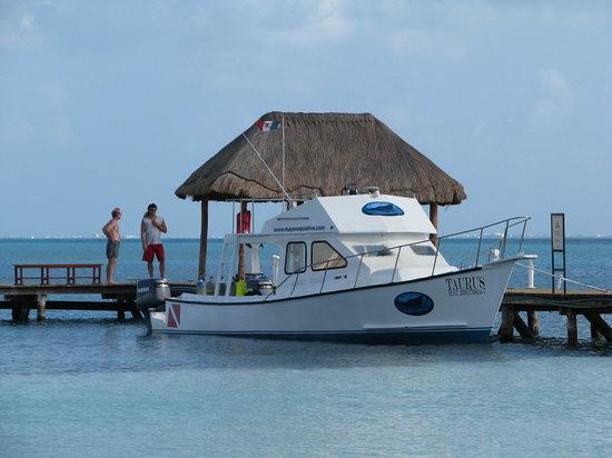 Mayan Aqua Dive: TAURUS