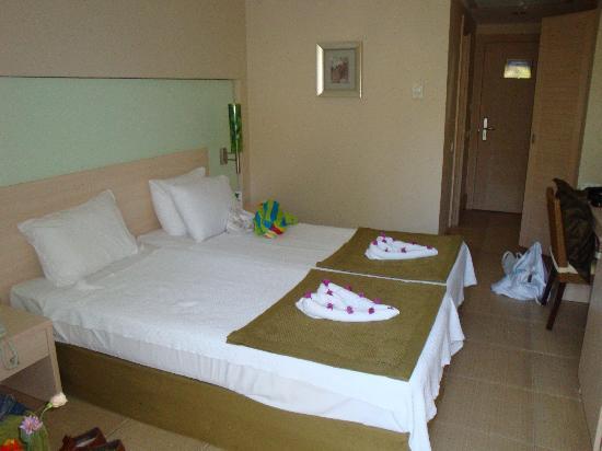 Ambassador Plaza Hotel : Room