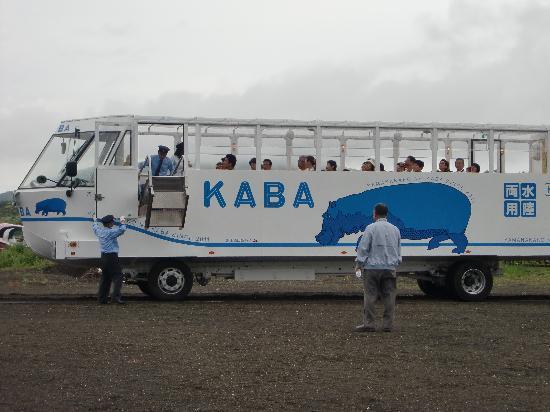 Yamanakako-mura, Japan: 湖に突入前運転手さん(陸)と船頭さん(湖)が交代します。