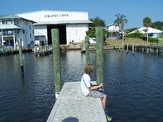 Pirate's Cove Resort and Marina: In addition to the beautiful Marina there's dry storage, and great fishing off the docks...Black