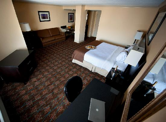 Holiday Inn Tewksbury Andover: Suite Guest Room