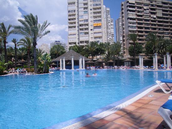 Sol Pelicanos Ocas: pool
