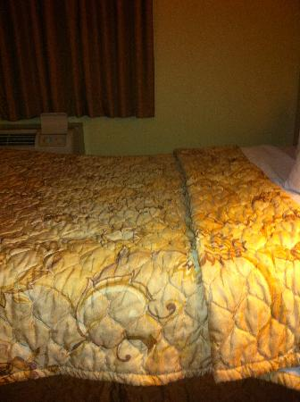 Days Inn & Suites Ft. Worth DFW Airport South: Would you sleep on  this?