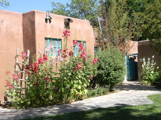 Love the hollyhocks! - Picture of Casas de Suenos Old Town Historic ...