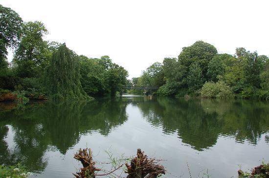Oerstedsparken: Ørstedsparkenの池を眺める