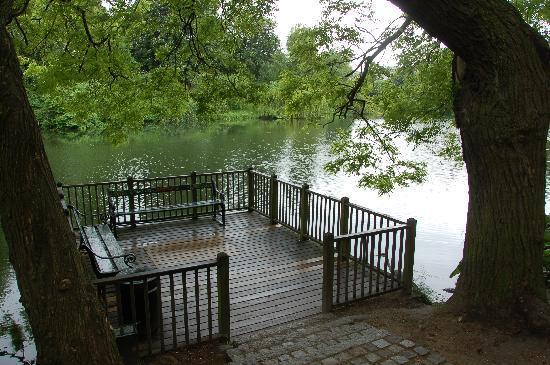 Oerstedsparken: Ørstedsparkenの池に張り出したデッキ