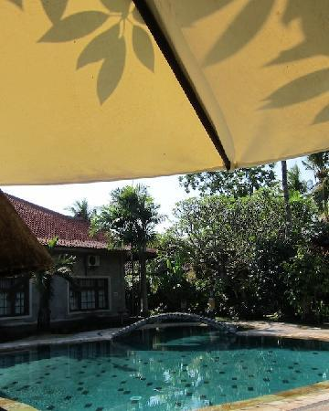 Sukun Bali Cottages: View from the table by the pool