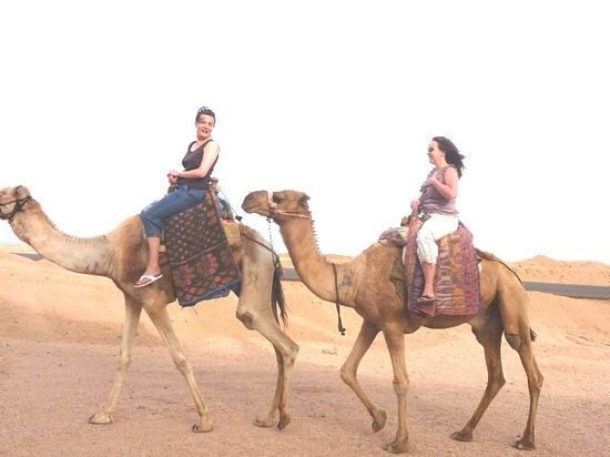 Palma Bedouin Safari Day Trips
