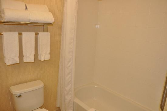 Holiday Inn Express & Suites El Paso Airport Area: bathroom