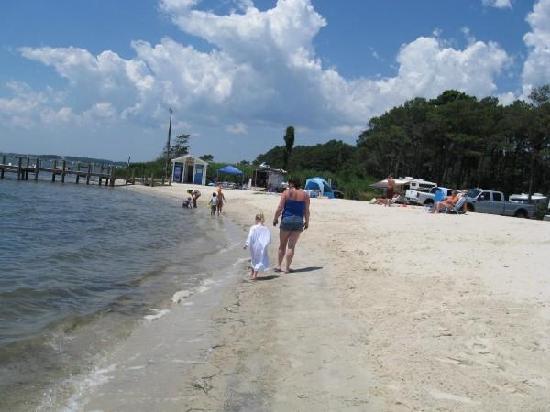 Castaways RV Resort & Campground: Dog Beach Area