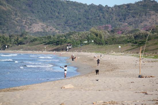 Hotel Cantarana: nahegelegener Strand