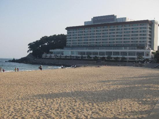 ‪‪The Westin Chosun Busan‬: Westin from the Beach‬
