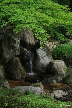 Raizan Sennyoji Daihioin: 雷山千如寺 心字庭園