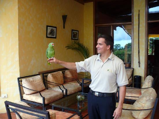 Hotel Paraiso Carlisa: The house parrot