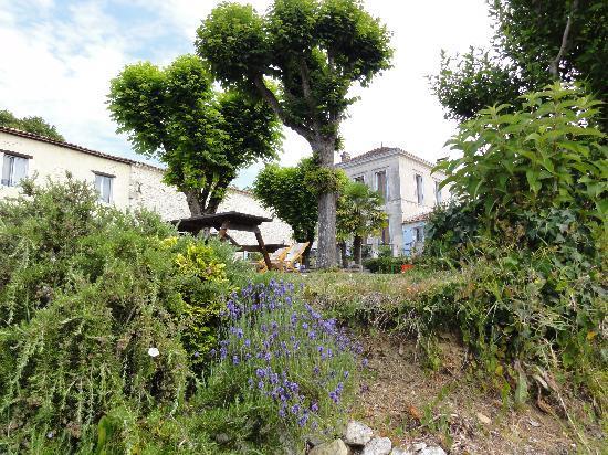 Domaine la Fontaine 사진