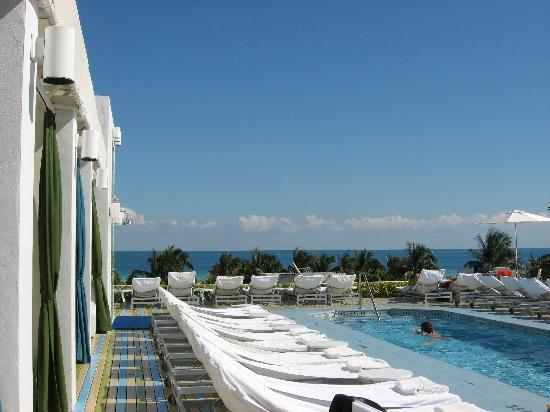 The Hotel of South Beach : Pool