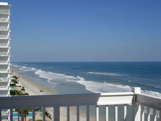 the view picture of daytona beach resort and conference. Black Bedroom Furniture Sets. Home Design Ideas