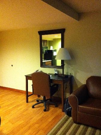 Homewood Suites by Hilton Dover: Livingroom area