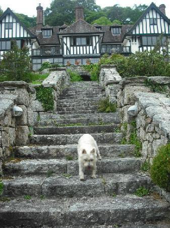 Gidleigh Park Hotel: Freya's new home (she wishes)