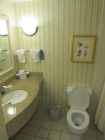 Hilton Garden Inn Charlotte Pineville : Bathroom