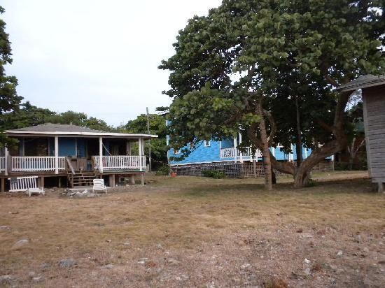Blenny House and Cabins: back