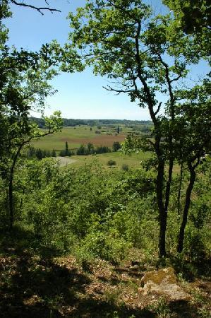 Montcaret, Frankreich: Countryside walks from the door