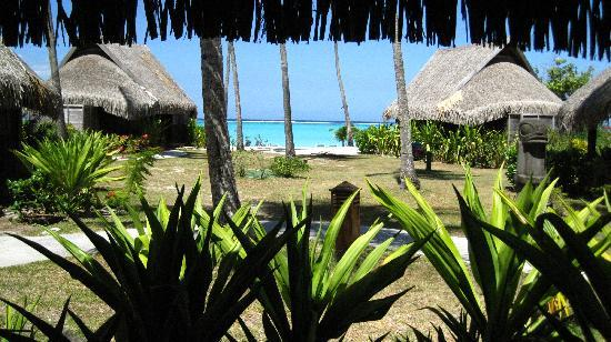The View From Our Bungalow Picture Of Sofitel Moorea Ia