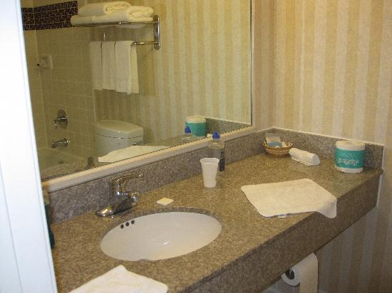 Best Western Camarillo Inn: Bathroom with some counter space