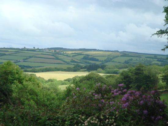 Cutthorne: The view from our window