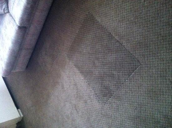 Edmonton Inn and Conference Centre: Patched up carpet in room