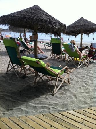 CLC Paradise: beach just down from apartments