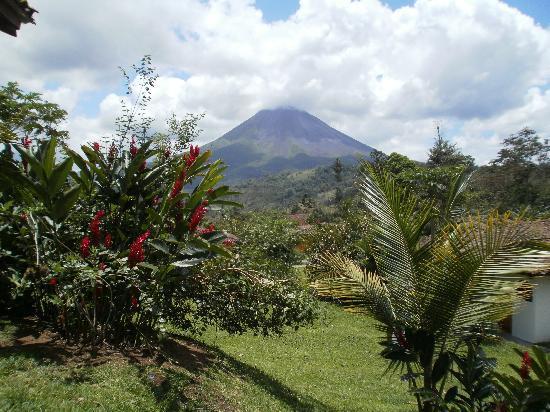 Hotel Mountain Paradise: Vista habitación