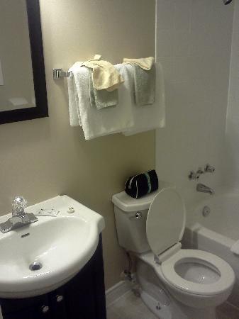 Berry's Motel: bathroom