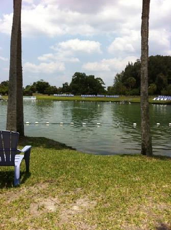 Warm Mineral Springs: looks pretty smells like sulfer